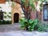 patio_caballos_apeadero